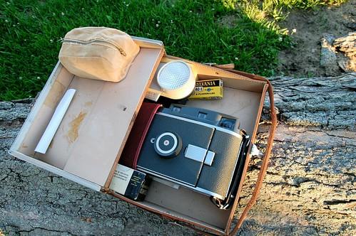 Polaroid 110a