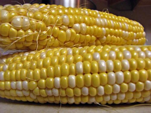 7-3-10 Corn On The Cob