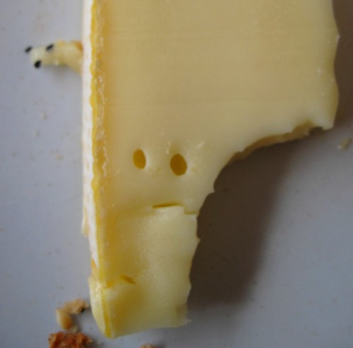 Concerned cheese