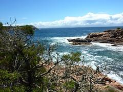 Côte Sud de Capu di Fenu