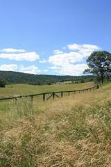 Sky Meadows State Park (Adam's Journey) Tags: outdoors virginia hiking 2010 stateparks skymeadowsstatepark canonxsi