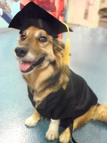 maggie_graduationLR