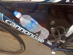 Dork Bottle
