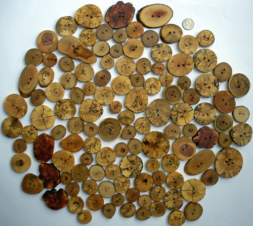 Wooden Treasures buttons 070910 (7)