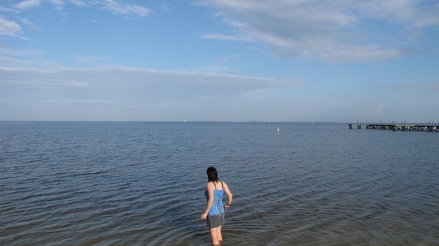 Wading into Tampa Bay