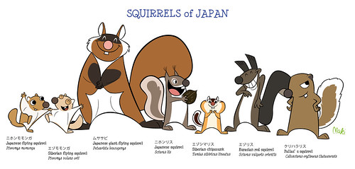SQUIRRELS of JAPAN