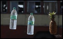 Bisleri (me&art) Tags: old india white man black st blind god n pineapple maharashtra mumbai devotee swami begger sadhu marathi veena vashi dindi bisleri jejuri varkari ashugalande tuljapur