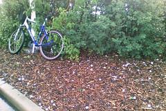 Abandon Ship! (OldDogNewTrick) Tags: bicycle hail cellphonecamera hailstones golfballs runforcover doughnuttime