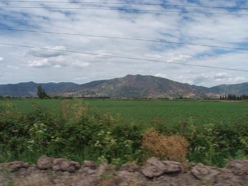 Vale do Colchagua