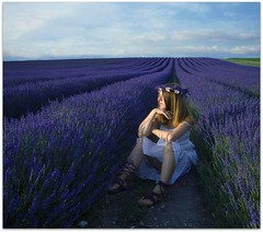 Waiting for Dusk (sosij) Tags: flowers england woman selfportrait me canon shadows purple lavender fields 5d hertfordshire whitedress nomatter imneverleaving lavenderheaddress picnikdroppedshadowborder actuallyitsatopandkidspetticoat purpledoesntneedjustificationtoexist