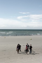 boulogne wimereux (Lobe occipital) Tags: sun fish france hot beach water fauna fun shark soleil amusement eau warm jellyfish boulogne clown requin poisson plage chaleur mduse boulognesurmer