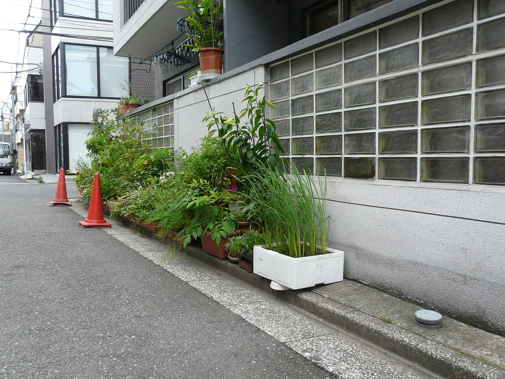 Tomatos and Rice on Harajuku Curb