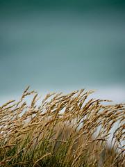 (mr muju) Tags: ocean beach studio cornwall view stormy days stives muju porthmeor