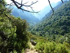 La vallée du Fangu et le Tafonatu depuis le couvent de Santa Maria