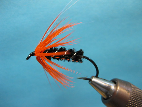 Classic Summer Steelhead Series Orange and Black