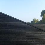 Schwarzes Holz thumbnail