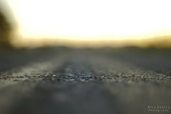 f1.8 (RicoDeasis) Tags: road sunset blur field point blurry focus dof bokeh perspective smooth ground level vanishing depth silky nikkoraf50mm18d nikond40x ricodeasisphotography