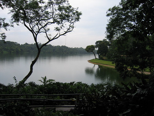 Lake @ Singapore Zoo