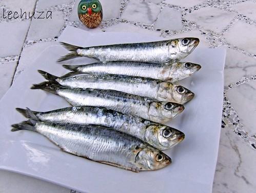 Sardinas-crudas