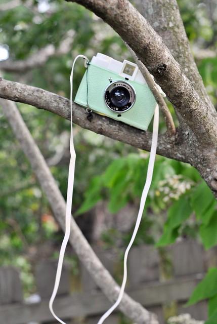 camera 018