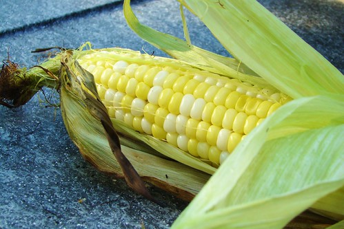 hot corn-on-the-cob