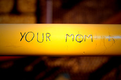 your mom (trouble4dan) Tags: bar canon mom yourmom stratches climbingbars vandle skratched vandlize trouble4dan