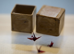 Sadako's Last Wish (William Bullimore) Tags: japan origami box crane hiroshima papercrane jp sadako hiroshimaprefecture origamicrane hiroshimapeacememorial sadakosasaki osakafu hiroshimashi