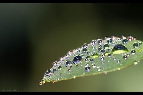 Water Drops Experiments