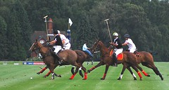 polo at the guards club windsor (brian.mickey) Tags: horses sport windsor polo englishsummer guardsclub pologuardsclubwindsor poloatwindsor