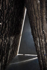 The Door (L I C H T B I L D E R) Tags: germany eifel devotion meditation christianity stillness zumthor mechernich wachendorf bruderklaus brotherclaus bruderklauskapelle niklausvonderfle brotherclausfieldchapel