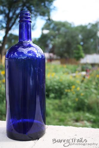 222-blue bottle2