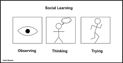 Social Learning in 3 Words