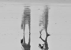 The reflection (AndreaKQ Photographer) Tags: bali reflection nikon kuta d60 andromeda50 mygearandme mygearandmepremium