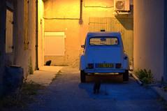 The last 2CV in France! (nachtschwimmer.com) Tags: auto car cat 2cv katze ente hinterhof