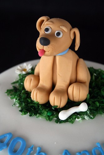 Close up of fondant puppy