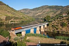 1960 Tua (Nohab0100) Tags: train tren douro cp tua 1960 comboio bombardier viaduto