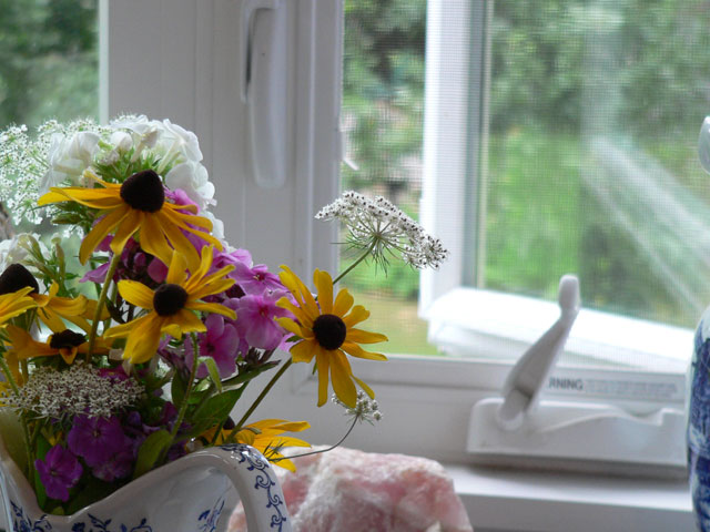 open_window_flowers
