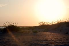 Sunset at the Point (Candid Captures by Carol) Tags: ocean sunset beach sunrise island happy sand award hatteras sanddune outerbanks magical day21 day22 niedersterreich shiningstar obx demonstratie mondfinsternis malieveld tamborrada beautifulpicture jan21 photographyrocks daysixteen daytwentyone project36521 flickraward cpbrasil day21365 nikonaward tipsytuesday nicesmilesir fotosndag ds427 ds432 carolknepp