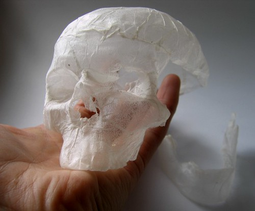 tissue paper sculpture - shrunken skull