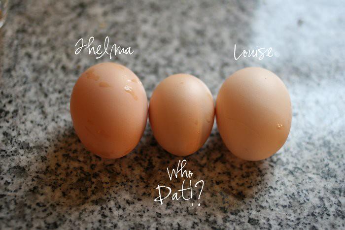 08-18-eggs
