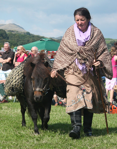 Lady with Shetland