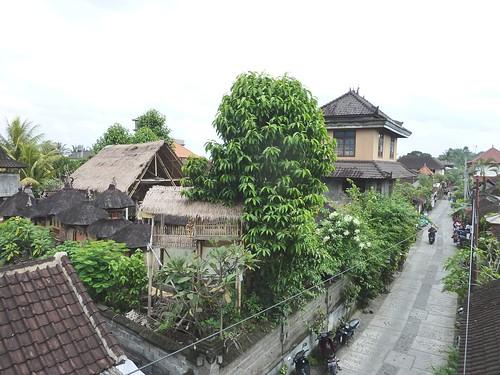 Bali-Ubud (1) - Copie
