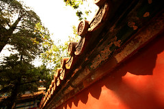 Imperial Gardens 39 (David OMalley) Tags: china city red beauty architecture capital chinese beijing palace forbidden empire imperial  forbiddencity dynasty emperor  grandeur  verbotenestadt citinterdite    verbodenstad cidadeproibida cittproibita yasakehir chineseempire    ipinagbabawalnalungsod cmthnhph