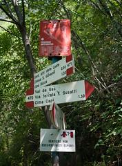 Alpine trail markers