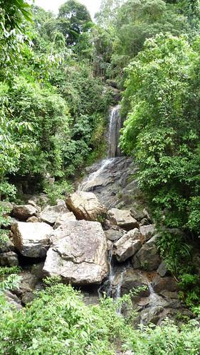 Koh Samui Canopy Adventures サムイ島キャノピーアドベンチャー2
