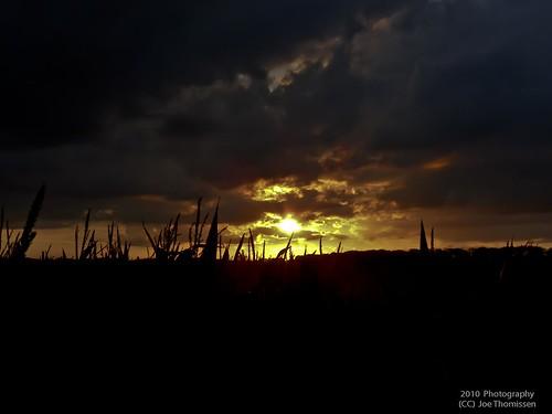Sunset beyond the Corn