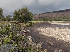 The bend in the Dee (tricycledteenager) Tags: landscape scotland highlands scenery rocks aberdeenshire stormy foliage braemar riverdee linnofdee