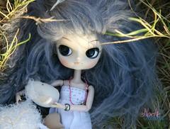 Noche (Dal Hanaayame) (*Greenbottle*) Tags: noche doll dolls sheep handmade lola dal wig mohair pullip fashiondoll greenbottle oveja muñecas peluca hechoamano junplanning mohairwig fashiondolls hanaayame obitsu23 libelularia dalhanayame