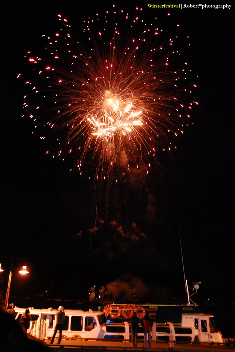 Firework 06