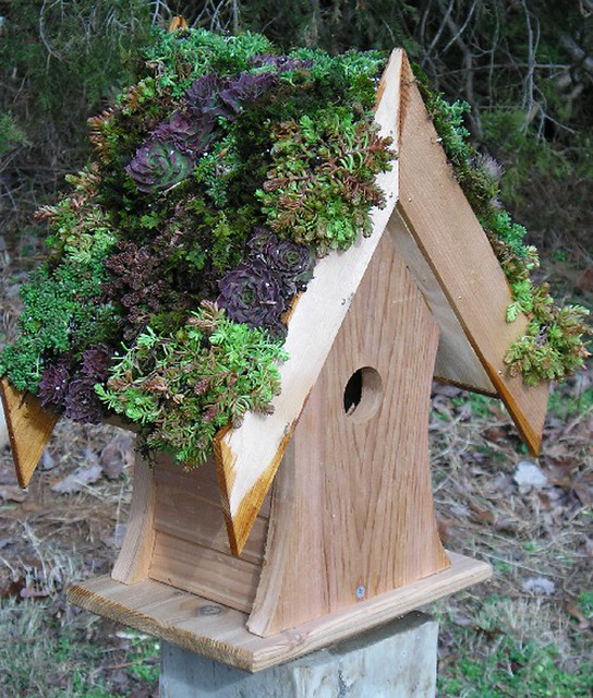 bird-house-green_http-www.ultimatefowl.comviewtopic.php-f45t2524